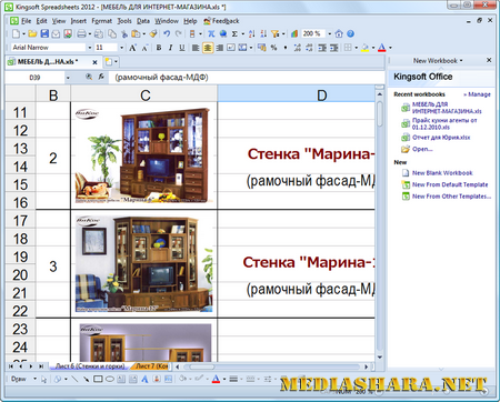 Kingsoft Spreadsheets Professional 2012 8.1.0.3019
