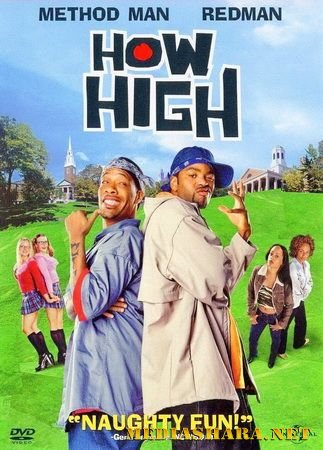 Торчки / How high (2001) HDTVRip